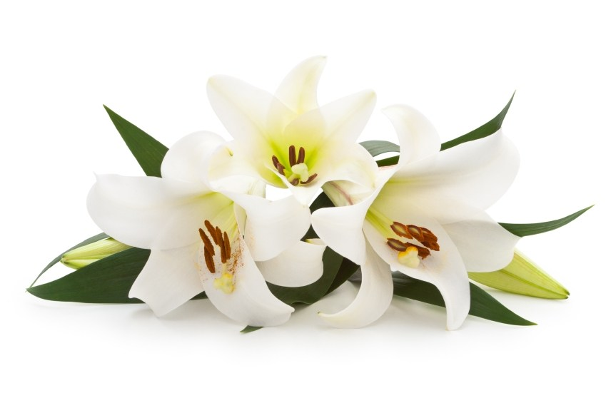 Bereavement/Funeral Ministry Meeting