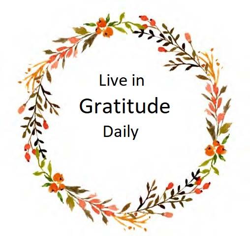 Life in Gratitude