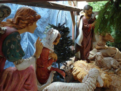 La Venta de Tarjetas de Navidad Termina Pronto